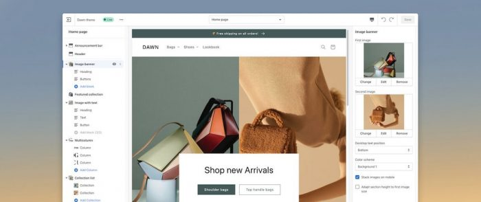 shopify-online-store